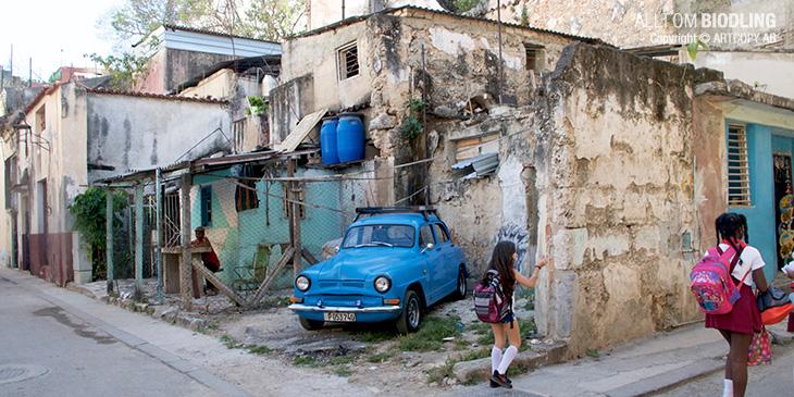Biodling - Kuba - 37