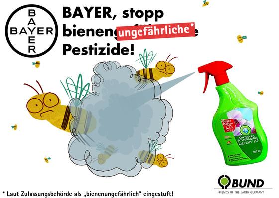 Bund-Bayer