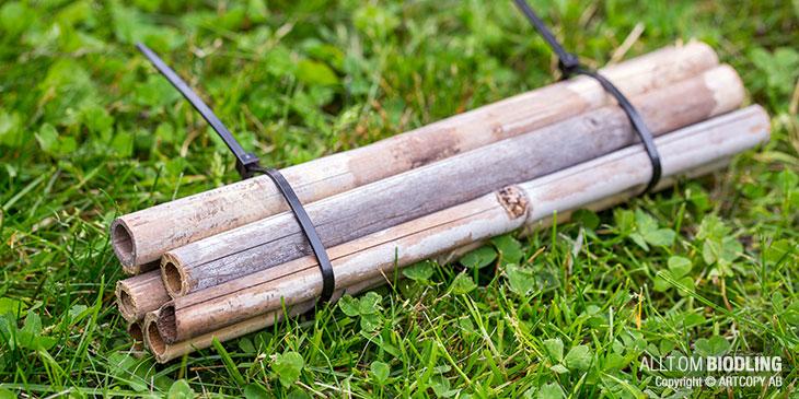 Bibatteri av bambu