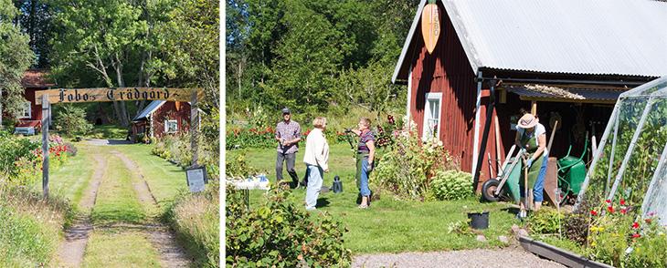 Biodlingens dag i Kvarnarp