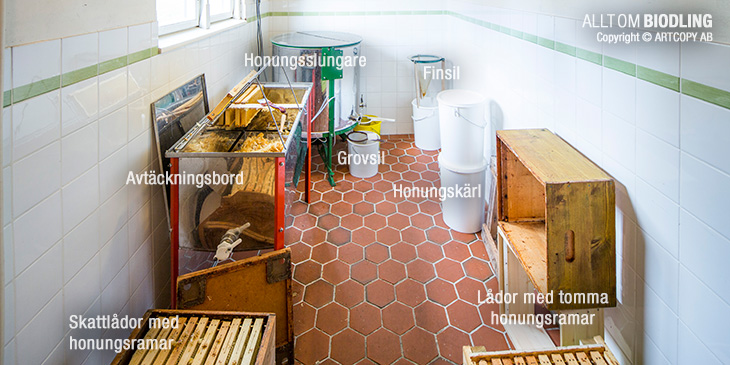 Slungrum - Honungsrum - Honungslokal - Honungshus