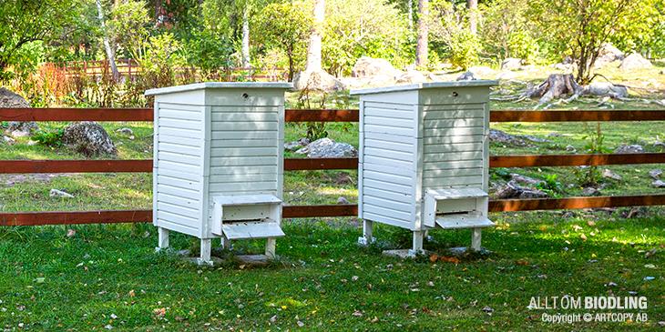 Stationär bikupa