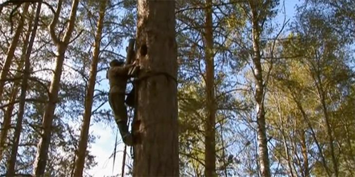 Trädbiodling - Trädbiodlare