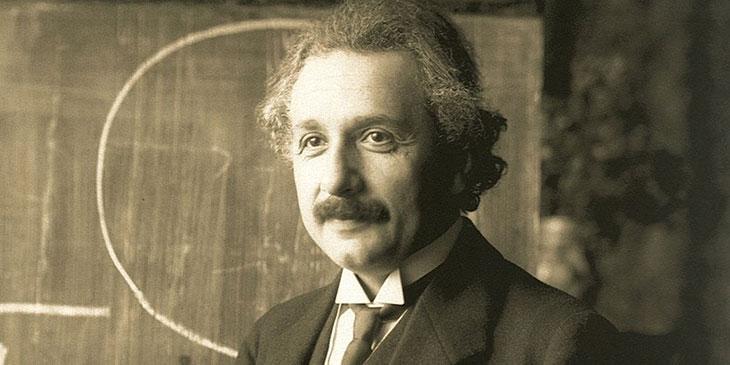 Einstein - Bin - Citat - Källa - Biodling